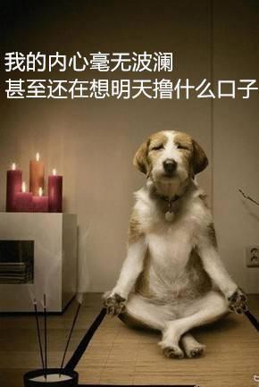 #七夕中奖名单#我的内心毫无波澜,甚至还在想明天撸什么...47 / 作者:卡农大美 /